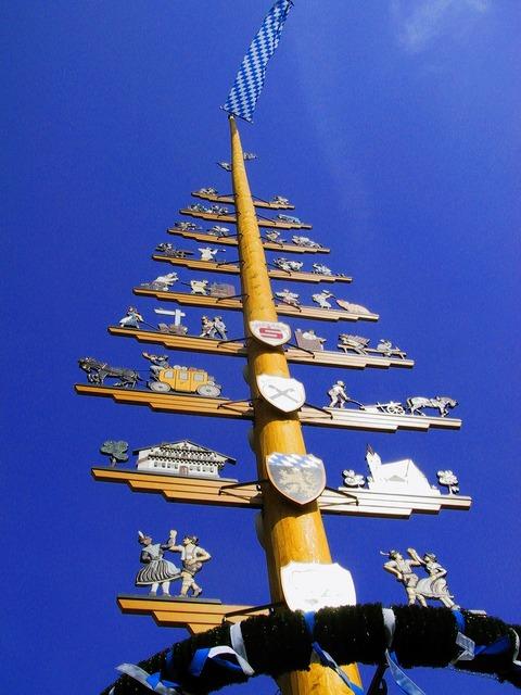 Tree bavaria birch, travel vacation.