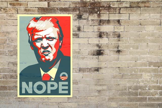 Trump donald trump donald.