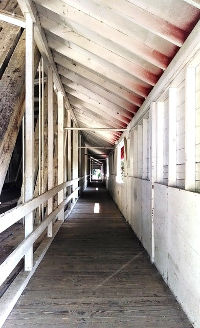 Tunnel walkway covered bridge, architecture buildings.