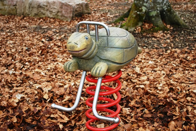 Turtle playground reptile.