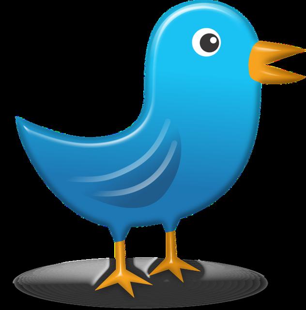 Twitter icon web, animals.