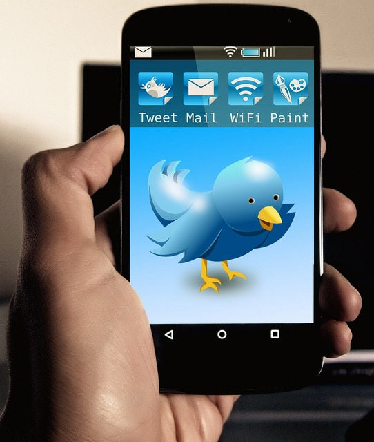 Twitter tweet smartphone, computer communication.