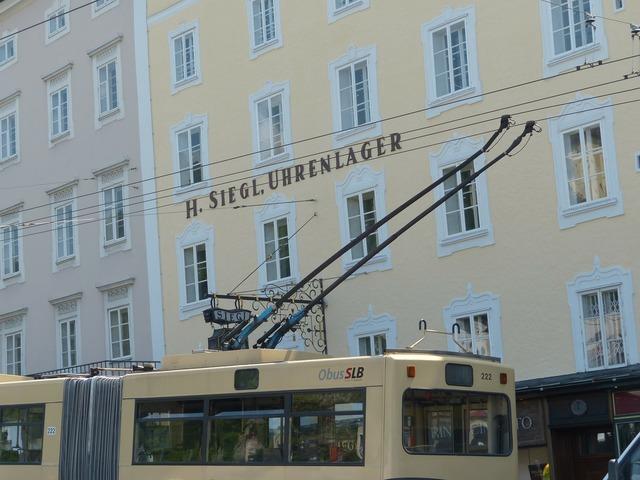 Upper lines trolley bus bus, transportation traffic.
