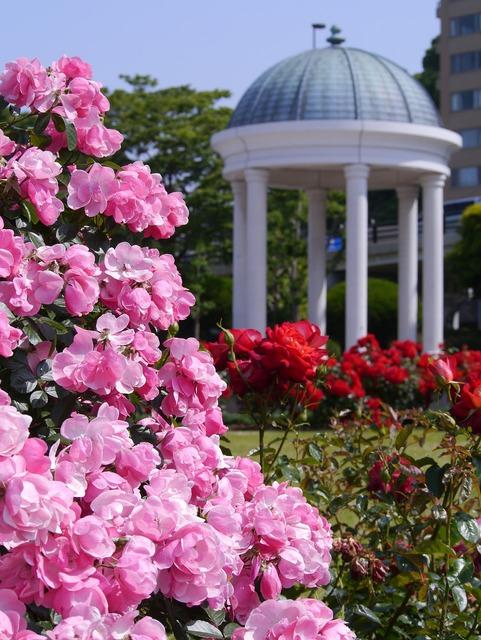 Verny park france rose, architecture buildings.
