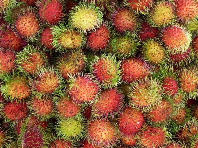 Vietnam asia tropical, food drink.