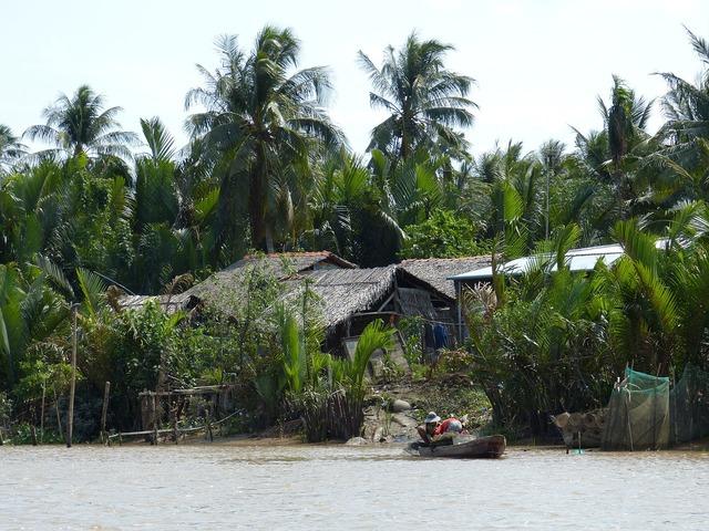 Vietnam mekong river river, transportation traffic.