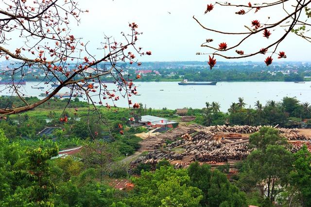 Vietnam river mekong.