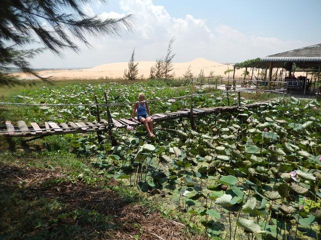 Vietnam summer muine.