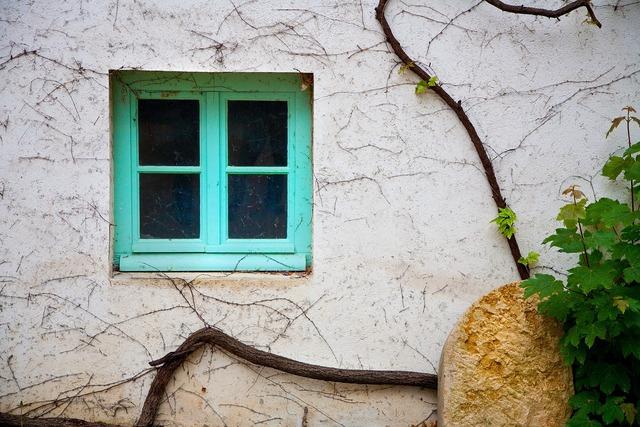 Vine window grapes.