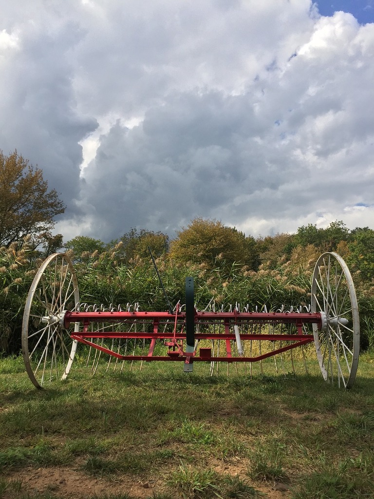 Vintage farm equipment 1776 revolutionary war.