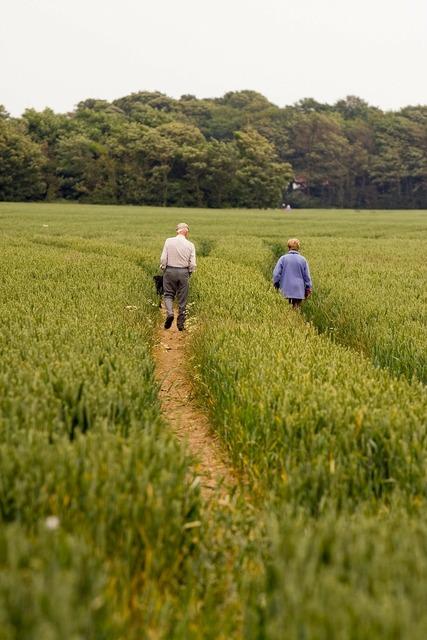 Walking walkers man, people.