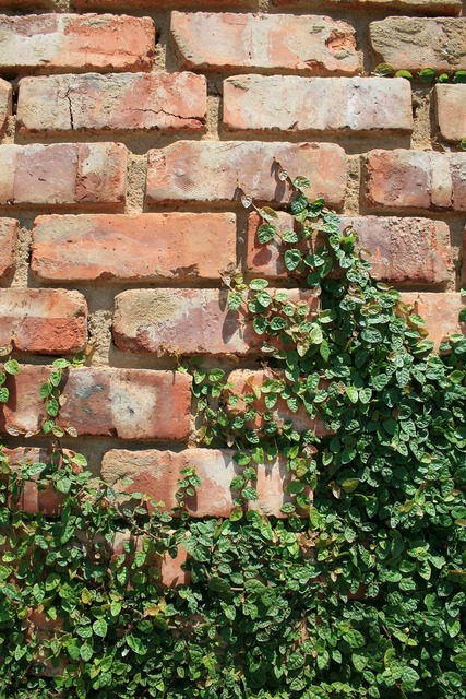 Wall brick rows, nature landscapes.