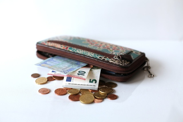 Wallet money euro, business finance.