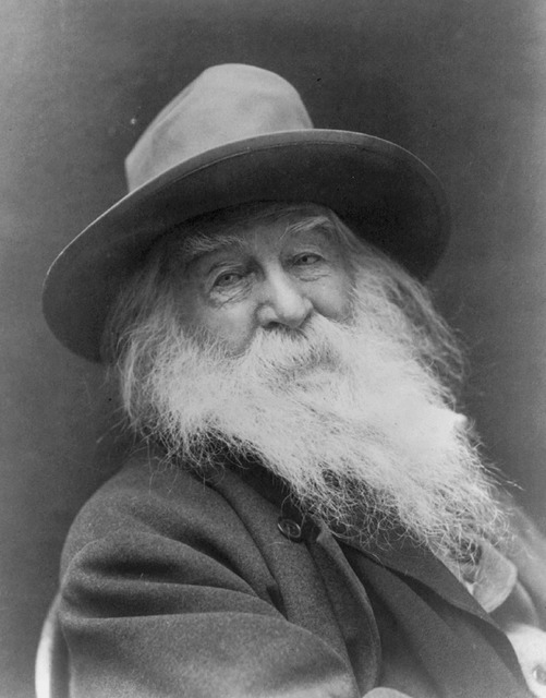 Walt whitman vintage american author, places monuments.