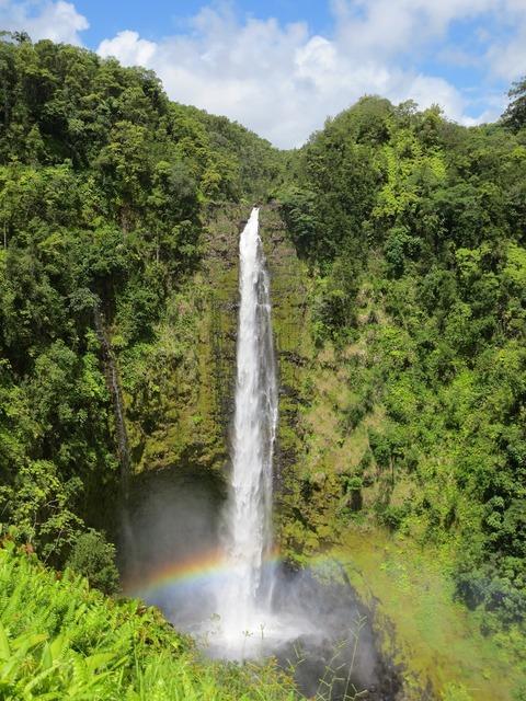 Waterfalls hawaii akaka falls.