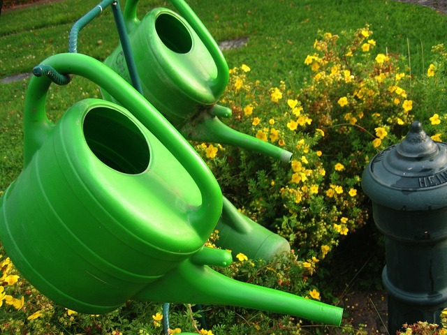 Watering can stand cemetery, nature landscapes.
