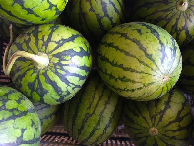 Watermelon green miurakaigan.