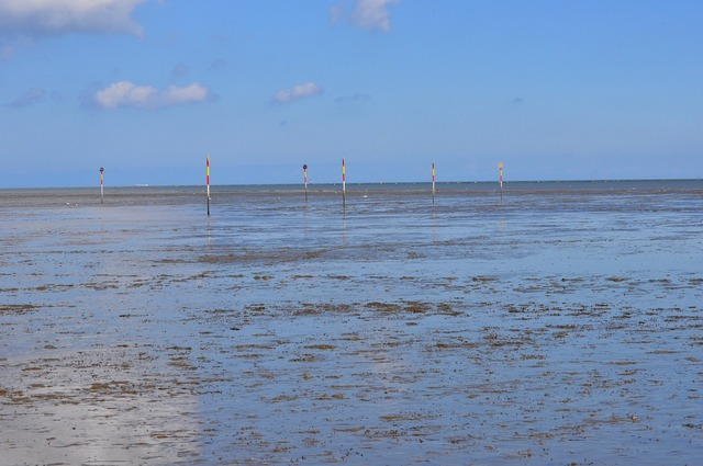 Watts north sea sea.