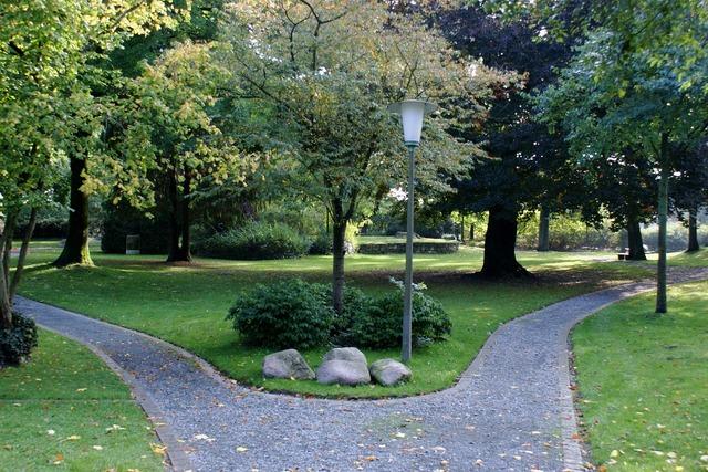Way park trees.