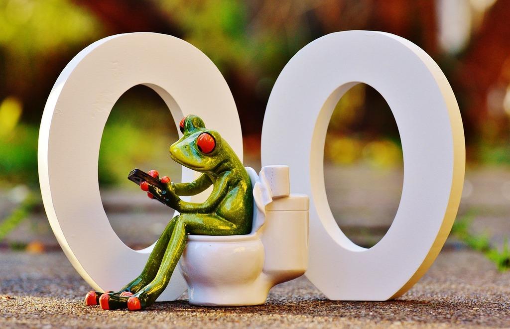 Wc 00 toilet, animals.