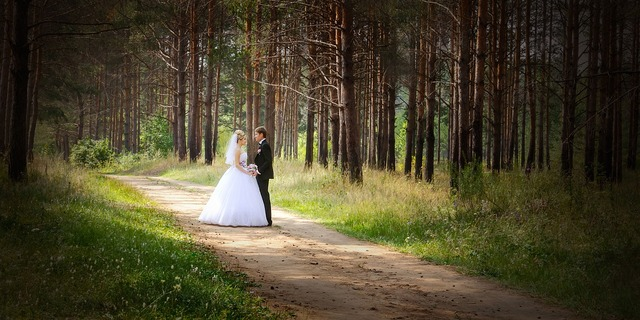Wedding just married bride, nature landscapes.