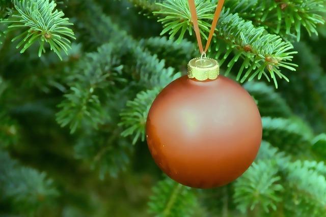 Weihnachtsbaumschmuck ball fir.