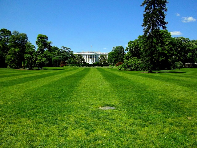 White house president house, architecture buildings.