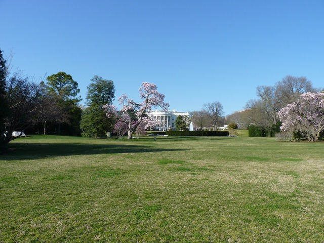 White house washington dc politics, places monuments.