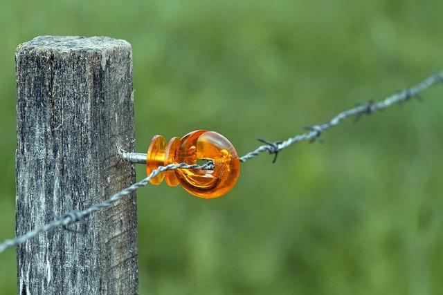 Wicker fence mount plastic.