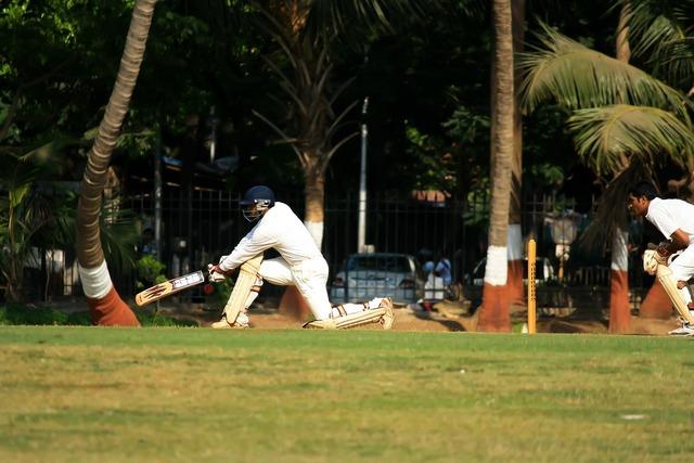 Wicketkeeper cricket batsman.