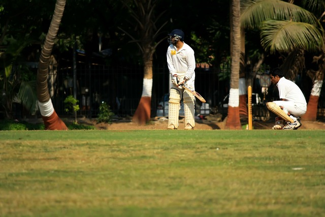 Wicketkeeper cricket defense.