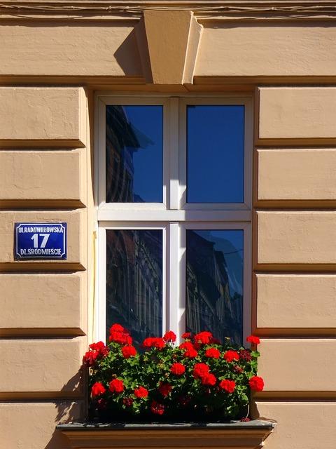 Window kamienica kraków, architecture buildings.