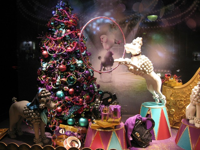 Window merry christmas dog, animals.