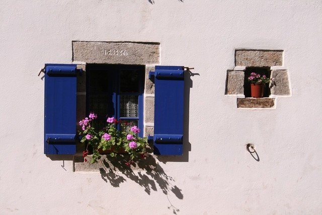 Window old flowers, architecture buildings.