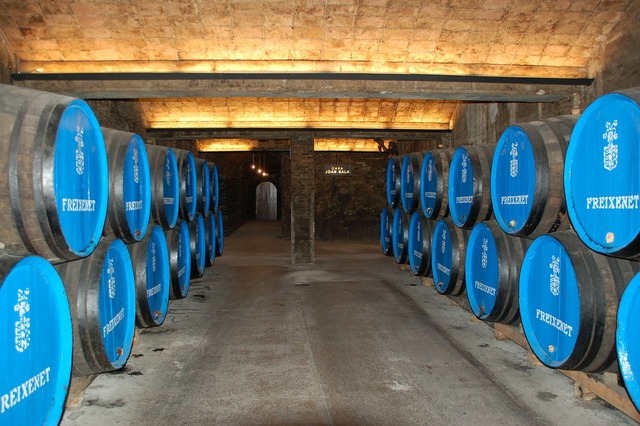 Wine cellar wine barrels wine.