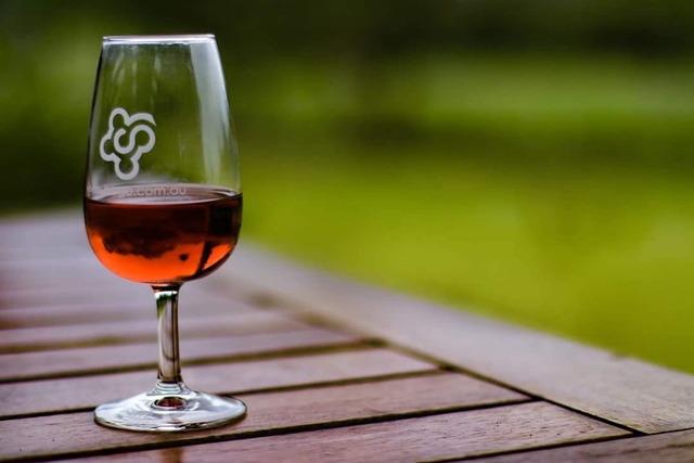 Wine glass glass of wine, food drink.