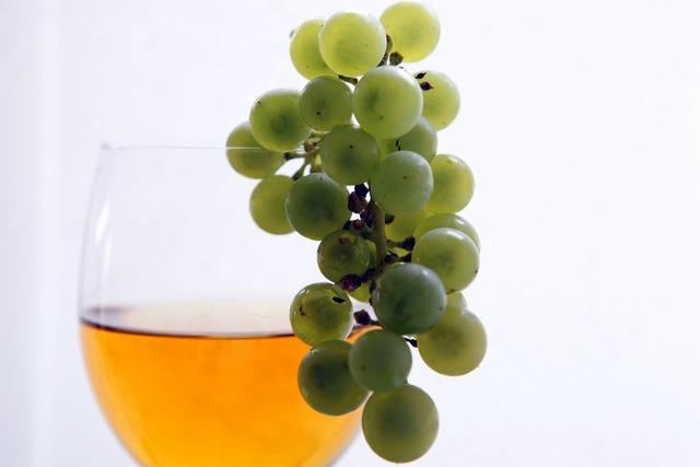 Wine vintage vines, food drink.