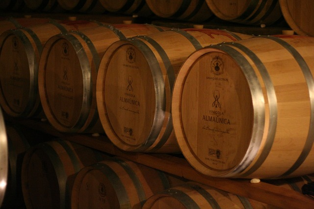 Wine winery barrel.