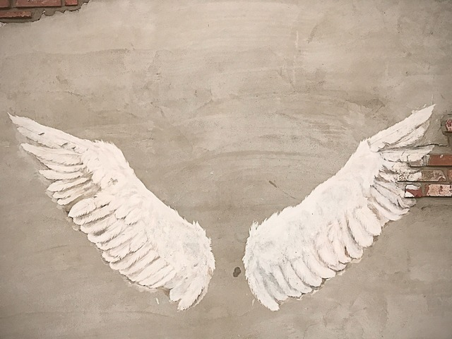 Wing angel wall, backgrounds textures.