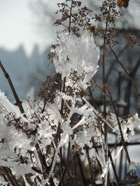 Winter ice eiskristalle.