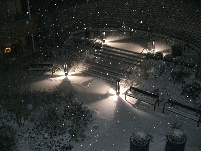 Winter impressions winter snow.