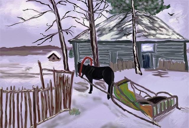 Winter russia horse.