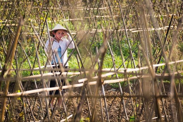Woman work farm, beauty fashion.