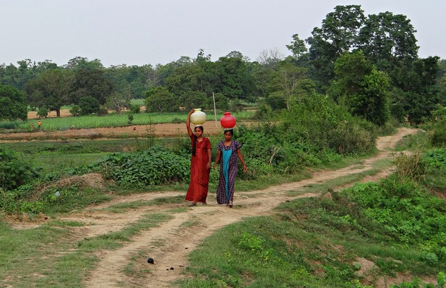 Women village fetching water.