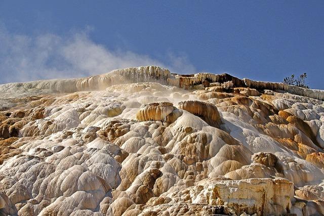 Yellowstone national park wyoming usa.
