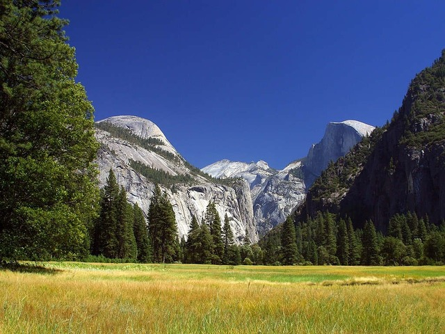 Yosemite reported valley, nature landscapes.