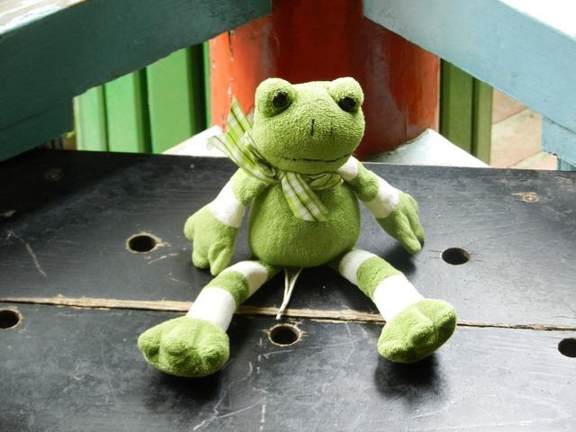 Żabka the frog the mascot, animals.