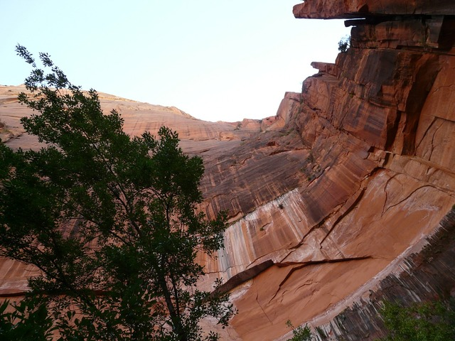 Zion national park national park wall.